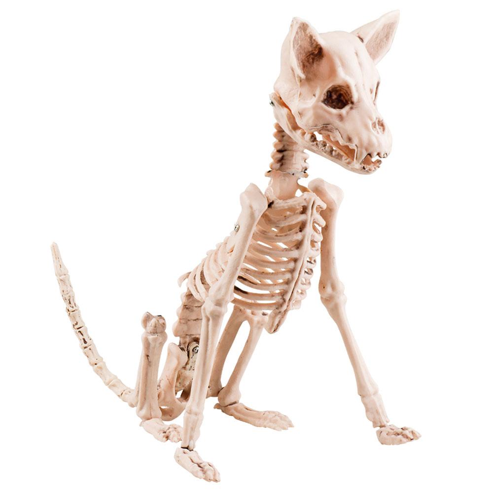 Hund - Sittande Hund Skelett Prop