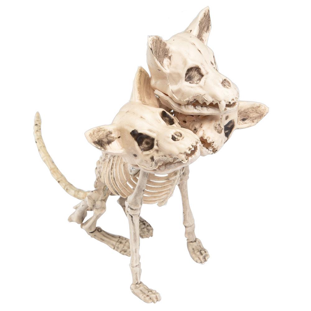 Trehövdad Hund Skelett Dekoration